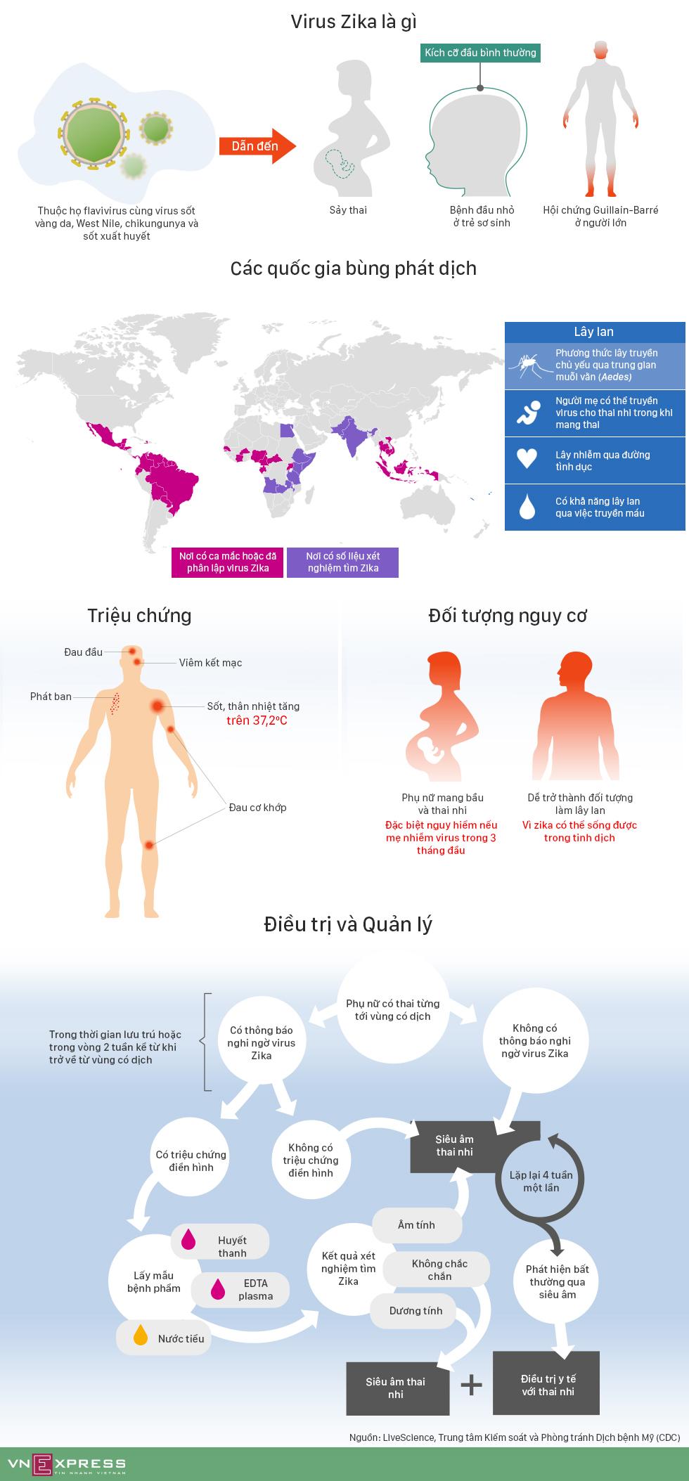 Virus Zika nguy hiểm như thế nào và cách điều trị